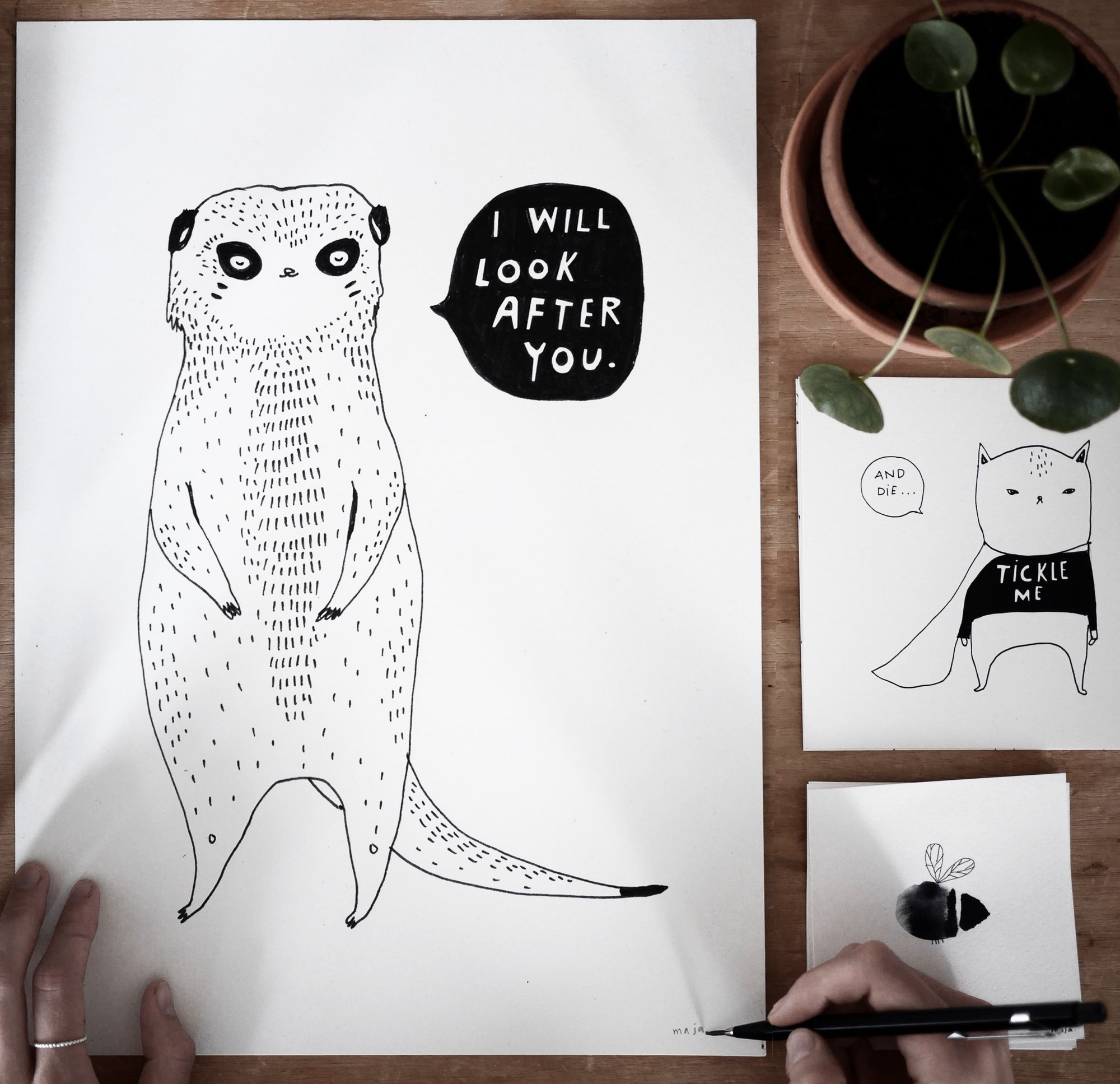 Interview With Maja Säfström: Drawing animals gives you so much freedom